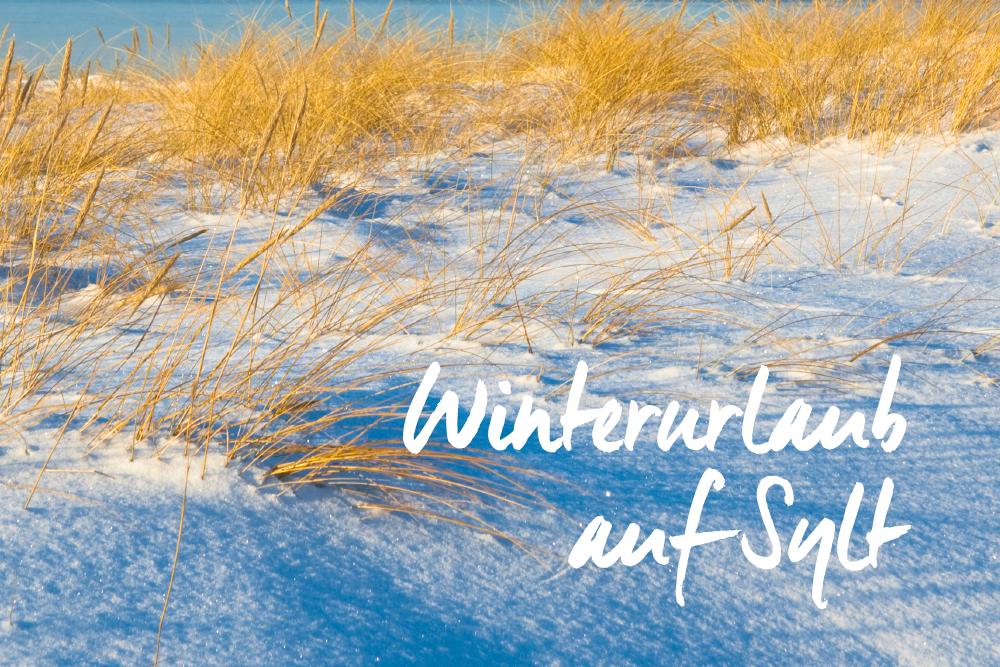 Startseite Teaser Startseite Winterurlaub Wyn Strandhotel Sylt 1000