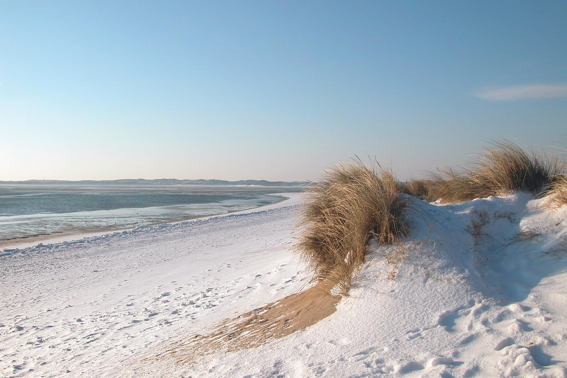 Angebot Wintervergnügen auf Sylt im Wyn Strandhotel Sylt